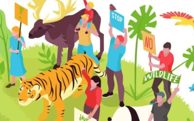 Youth For Biodiversity (Y4B)