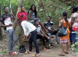 Jeunesse Environnement et Biodiversité